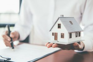 Assurance habitation primo accedant