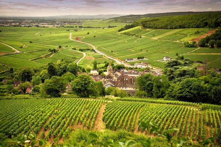 Bourgogne Franche compté aide